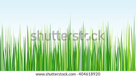 Young fresh grass on blue sky background. Abstraction. Vector EPS 10 - stock vector
