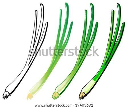 Young (green) onion