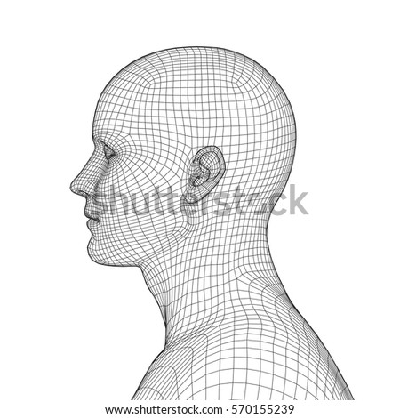 Young Man Face Portrait 3 D Wireframe Stock Vector 570155239 ...
