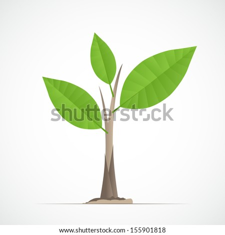 Young plant image - Vector illustration