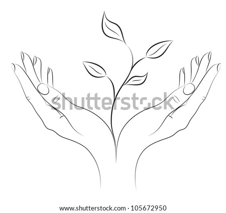 Young plant in female hands. A concept - the beginning of new life. Black-and-white drawing brush. Vector. - stock vector