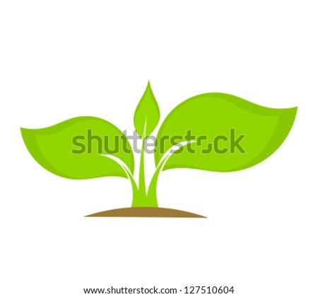 Young plant seedling growing in soil. Vector illustration - stock vector