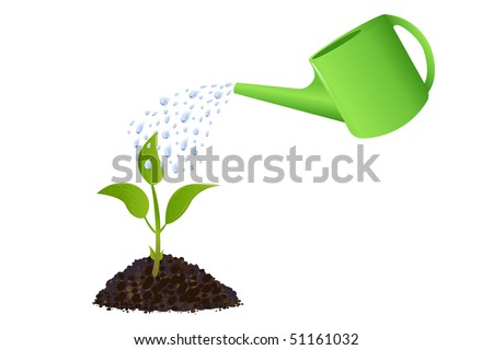 Young plant with watering can and water drops, Isolated On White - stock vector