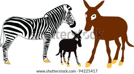 zebra and a donkey with a calf