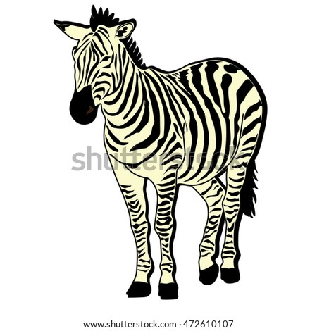 zebra horse beast icon cartoon design abstract illustration animal