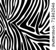 Zebra pattern vector - stock vector