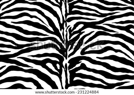 zebra pattern, vector - stock vector