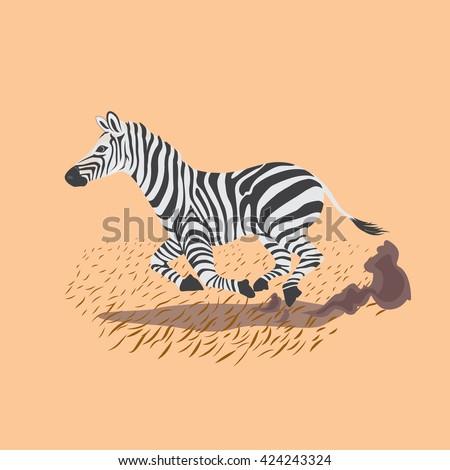 Zebra running  - stock vector