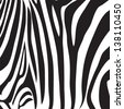 zebra stripe print vector - stock vector