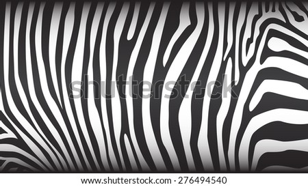 Zebra stripes pattern, illustration - stock vector