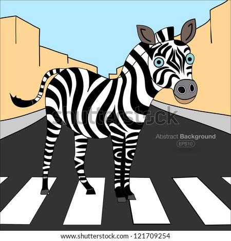 Zebra zebra crossing - stock vector