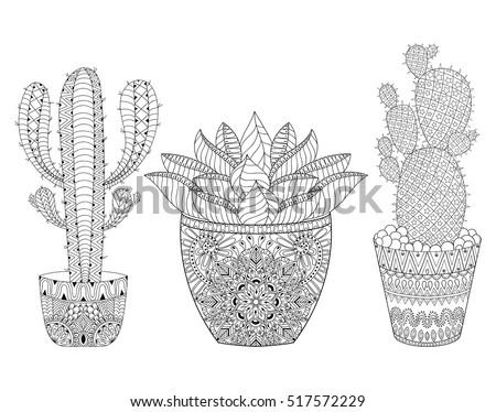 Zentangle Cactus Set Vector Illustration