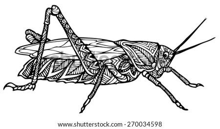 zentangle  style grasshopper vector - stock vector