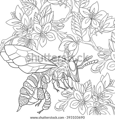 Zentangle stylized cartoon bee insect (bumblebee) flying among sakura flowers. Sketch for adult antistress coloring page. Hand drawn doodle, zentangle, floral design elements for coloring book. - stock vector