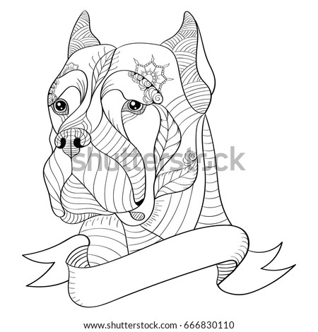 zentangle stylized head of italian mastiff cane corso vector illustration freehand pencil