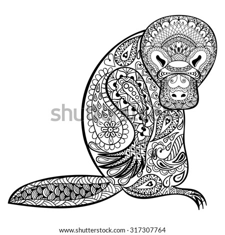 Platypus Stock Images Royalty Free Images Amp Vectors