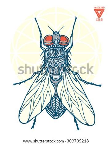 zentangle vector fly - stock vector
