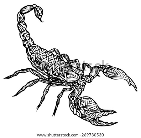 Scorpion on front view
